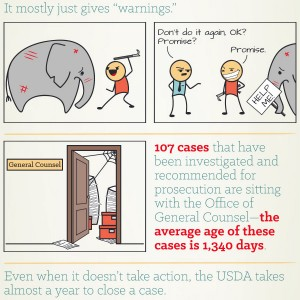 infographic-USDA-thumb