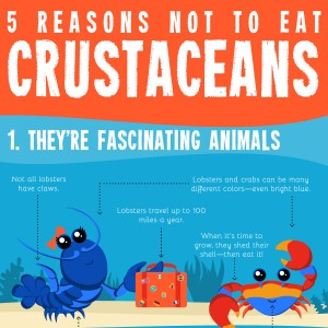 infographic-crustaceans-thumb